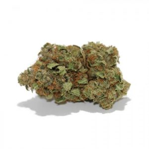 Buy Afghan Kush Flower Strain