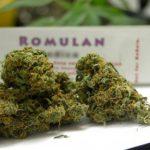 Buy Romulan kush online