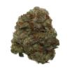 Buy Blue Cheese Flower Strain