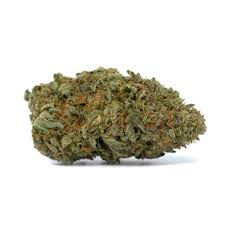 Buy Kosher Kush Flower Strain