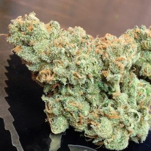 Buy Super Jack Flower Strain