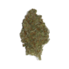 Buy Tangie Express Flower Strain