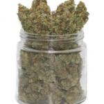 Buy Silver Haze Flower Strain