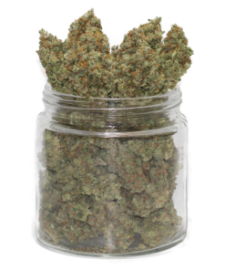 Buy Silver Haze Flower Strain