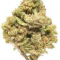 Order Acapulco Gold Weed Strain